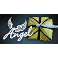 Ozone Angel