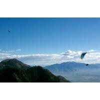 Ozone Swift4 EN-B